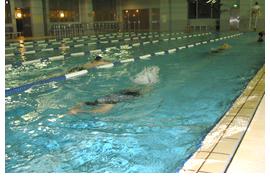 ゆっくり4泳法